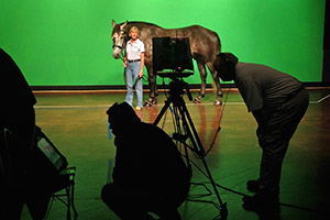A horse being photographed against a green screen backgrop
