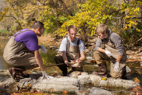 Dr. Ben Brammell, center, offers research opportunities in the lab and local watersheds.