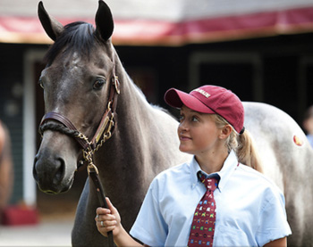 Libby Vandervennet '14 worked at one of central Kentucky's thoroughbred farms over the summer.