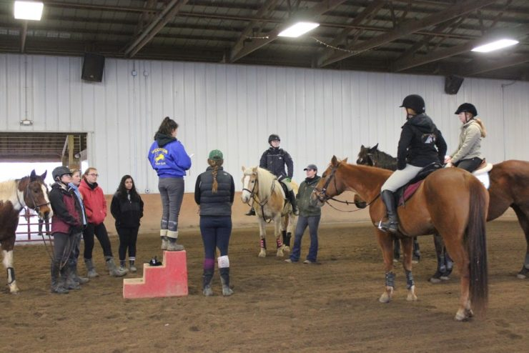 students and horses working together in an arena