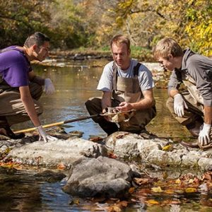 Students and professor in waders in a stream