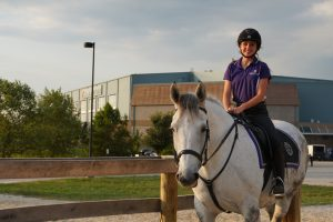 Equine Center awarded grant
